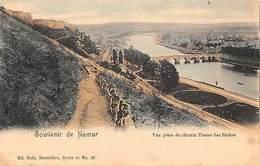 Belgium Souvenir De Namur, Vue Prise Du Chemin Tienne Des Biches - Belgien