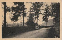88 - BRUYERES - Route De Vervezelle - Bruyeres