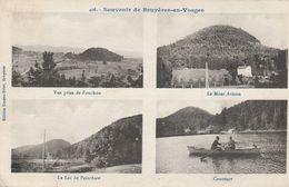88 - BRUYERES - Souvenir De Bruyères En Vosges - Bruyeres