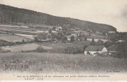 88 - SAINT  DIE - Bois De La Behouille Où Les Allemands Ont Perdu Plusieurs Milliers D' Hommes - Saint Die