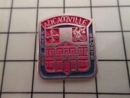 415a Pin's Pins / Rare & Belle Qualité !!! THEME : VILLES / COMITE DES SPORTS AUCAMVILLE - Animals