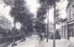 Belgique - MEERSEL - DREEF ( Hoogstraten ) 1915 - Hoogstraten