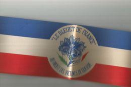 10 Brassards-bleuet De France - Drapeaux