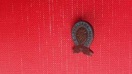Old Pin.PD LJUBLJANA MATICA - Alpinisme