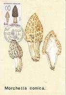 Morchella Conica Morille Conique (timbre Et Tampon Premier Jour 1987) - Pilze