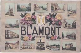 54. BLAMONT. 14 Vues - Blamont