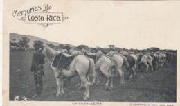 ***85 ***  LES SABLES D'OLONNE Sur La Plage -- TTB écrite - Costa Rica
