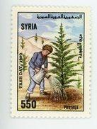 Syrie 1990-Journée De L'arbre YT 902***MNH - Syria