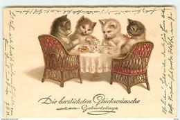N°14245 - Die Herzlichen Glückwünsche Zum Geburtstage - Chats Prenant Le Thé - Animales Vestidos