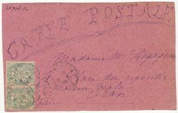CP MustaphaAlger Paire 5c Blanc 1902 Décorée Gouache Papillon, Fleurs (2 Scans) - 1877-1920: Periodo Semi Moderno