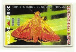 Russia - Tessera Telefonica Da 30 Units - Farfalla - Papillons