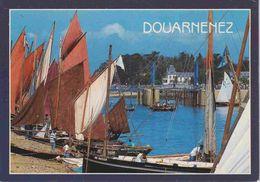 29 DOUARNENEZ Rassemblement De Voiliers Dans Le Bassin Du Port-Musée De Port-Rhu - Douarnenez