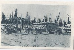 ALASKA - América