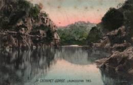 CPA - LAUNCESTON - IN CATARACT GORGE ... - Edition Selwyn Cox - Lauceston