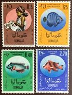 Somalia 1962 Child Welfare Fish MNH - Fische