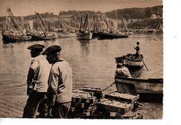 CPSM DOUARNENEZ Pêcheurs De Sardines - Douarnenez