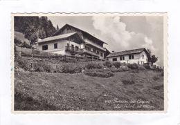 CPSM.  14 X 9  -  Pension Des Sapins. - La  Niord - VS Valais