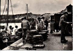 CPSM DOUARNENEZ Débarquement De La Sardine - Douarnenez