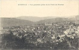CPA Oyonnax Vue Générale Prise De La Forêt De Nierme - Oyonnax