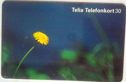 30 Units Yellow Flower - Suède