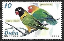 Cuba - MNH 2005 :    Yellow-collared Lovebird    Agapornis Personatus   +   Fischer's Lovebird    Agapornis Fischeri - Papegaaien, Parkieten