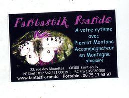 Carte De Visite Accpmpagnateur Montagne Theme Papillon - Cartes De Visite