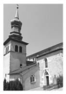 LUCEY - L'église Saint-Etienne - France