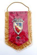 Fanion 14°Régiment Parachutiste De Commandement Et De Soutien (14e RPCS). 1933-1993. Amicale Des Anciens - Militaria