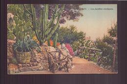 MONACO LES JARDINS EXOTIQUES - Exotic Garden