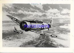 136658 AVIATION AVIACION N. AMERICAN HARVARD II 17.5 X 12.5 CM PHOTO NO POSTAL POSTCARD - Aviation