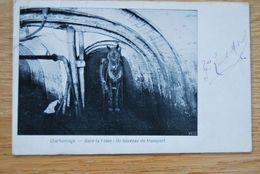 2990/Charbonnage - Dans La Fosse: Un Bouveau De Transport  (1904) - Sin Clasificación