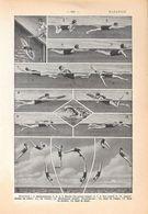 Natation. Stampa 1954 - Vieux Papiers