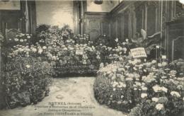 RETHEL EXPOSITION D'HORTICULTURE DU 16  OCTOBRE 1910 LES MAISONS   ZIMMERMANN ET NICAISE - Rethel