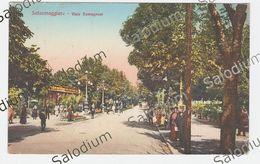 1925 - SALSOMAGGIORE ANIMATA - Parma