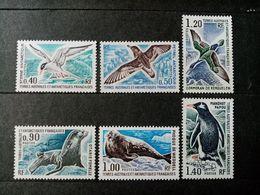 TAAF.1976. Série N°55 à 60.FAUNE .  NEUFS++ Côte Yvert 2015  : 80 € - Terres Australes Et Antarctiques Françaises (TAAF)