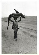 CPM - Editions Marion-Valentine - N 260 - Photo : Edouard BOUBAT - Ghana 1960 - Ghana - Gold Coast