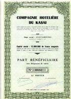 COMPAGNIE HOTELIÈRE Du KASAI - Tourisme