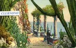 CPA - MONACO - JARDINS EXOTIQUES - Exotic Garden