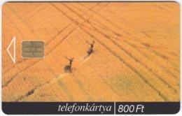 HUNGARY F-086 Chip Matav - Landscape, Field, Animal, Deer - Used - Hongrie