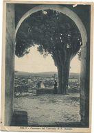 XW 2936 Rieti - Panorama Dal Convento Di Sant'Antonio / Viaggiata - Rieti