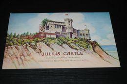 16596-               CALIFORNIA, SAN FRANCISCO, JULIUS CASTLE - San Francisco