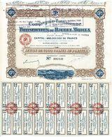 Titre Ancien - Compagnie Tunisienne Des Phosphates Du Djebel Mdilla - Société Anonyme  - Titre De 1920 - Déco - - Mines