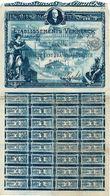 Titre Ancien - Etablissements Verminck - Société Anonyme  - Titre De 1920 - Déco - - Industrie