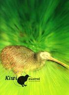 "FRANCE 2000 : Encart 1er Jour "" FRANCE - AUSTRALIE /  KIWI "" N° YT 3360. Parfait état. FDC - Kiwi"