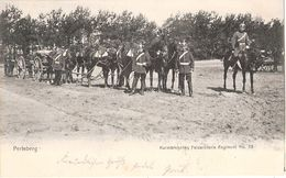PERLEBERG Prignitz Kurmark Feldartillerie Regiment No 59 Pickelhaube Gelaufen 17.5.1905 - Perleberg