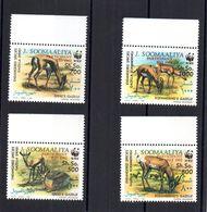 SOMALIA, 1992 - SERIE, SET - WWF - RIO '92, BDF MNH** - Somalie (1960-...)