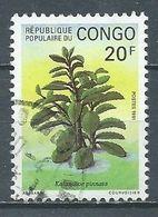 Congo YT N°897 Plante Kalanchoe Pinnata Oblitéré ° - Afgestempeld