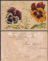 Italia - Cartolina Postale - Fiori - 1905 - Circulee - Cygnus - Flores