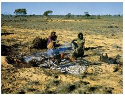 (B 6) Australia - Aboriginal Cooking Wombat - Aborigenes