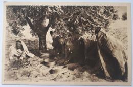 353 SFAX- Ramassage Et Tannage Des Olives à La Main - Chambre Mixte De Commerce Et D'agriculture - Tunesien